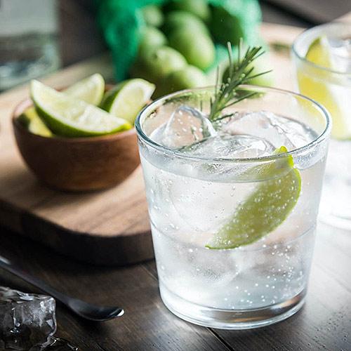 Steckbrief Gin